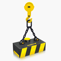 electroiman industrial Cargo Flet Blasant 5